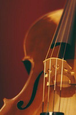 SFCO Free Concert: The Virtuoso Orchestra